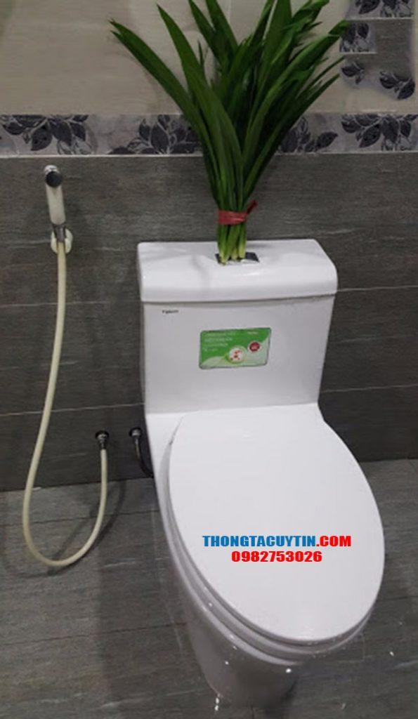 Khử mùi hôi nhà vệ sinh bằng lá dứa